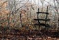 Picture Title - Monte della cesta