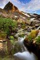 Picture Title - Alpine Stream, High Sierra