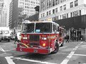 Picture Title - New York's Bravest