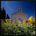 Picture Title - S. Maria di Ronzano