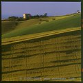 Picture Title - Tuscany posters  Italian Hills