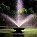 Picture Title - The fountain