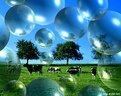 Picture Title - Bubble Land