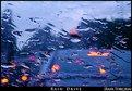 Picture Title - Rain Drive
