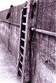 Picture Title - Forgotten pier