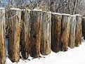 Picture Title - Log Fence