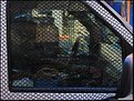 Picture Title - Police Van
