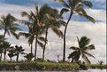 Picture Title - kauai lagoon