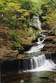 Picture Title - Falls in Fall 1