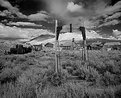 Picture Title - Bodie