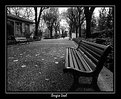 Picture Title - Quietness