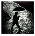 Picture Title - Rainman
