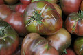 Picture Title - you say tomato....