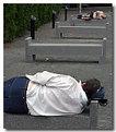 Picture Title - Hoboken Park Sleepers