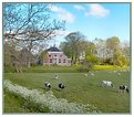 Picture Title - Farm House in Springtime