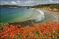 Picture Title - Stewart Island