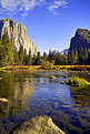 Picture Title - Yosemite Beauty...