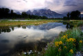 Picture Title - Teton Reflections