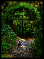 Picture Title - Sweet little boy in the woods