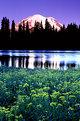 Picture Title - Mount Rainier Sunrise