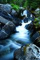 Picture Title - Paradise Creek