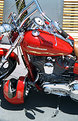 Picture Title - Red Harley