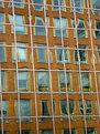 Picture Title - Wobble Windows