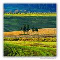 Picture Title - Minimal Landscape # 15