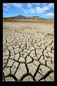 Picture Title - Drought..