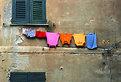 Picture Title - Distesa di colori