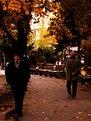 Picture Title - autumn in eskisehir