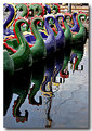 Picture Title - Dragon Boat Reflections