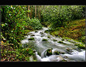 Picture Title - Borning river ...