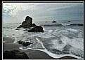 Picture Title - muir beach