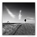 Picture Title - Minimal landscape 2006