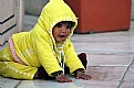 Picture Title - yellow kiddy