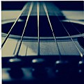 Picture Title - Guitar 8557