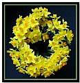 Picture Title - spring wreath