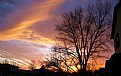 Picture Title - Sunset and trees