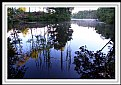 Picture Title - Little Massapoag Pond
