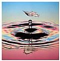 Picture Title - Double Splash III