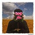 Picture Title - El Jardinero