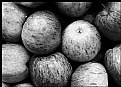 Picture Title - Black and White Apples