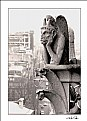 Picture Title - Notre Dame
