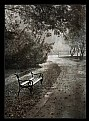 Picture Title - Bench