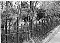 Picture Title - Fence 2