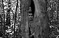 Picture Title - portrait in the hollow of the tree,