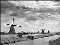 Picture Title - Mills of Kinderdijk