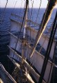 Picture Title - Sedov in the Baltic