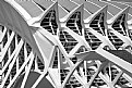 Picture Title - Calatrava